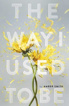WAY I USED TO BE,THE - Simon & Schuster